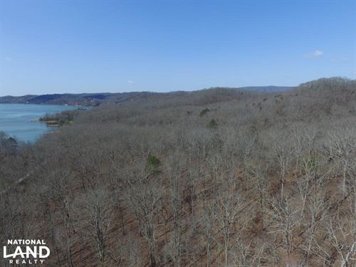 Wooded Acreage Near Watts Bar Lake : Rockwood : Roane County : Tennessee