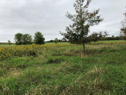 Secluded Buildable Acreage : Belgium : Ozaukee County : Wisconsin