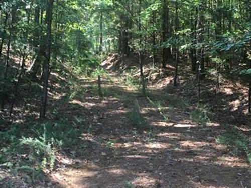 Nash, Alcorn Tract : Rienzi : Alcorn County : Mississippi