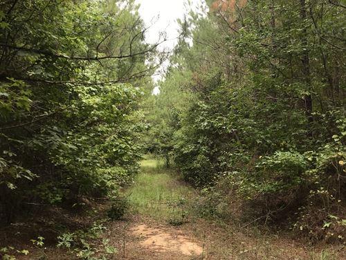 Nash, Montgomery Tract : Winona : Montgomery County : Mississippi