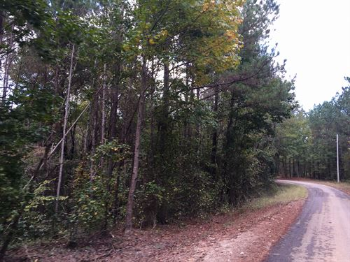 Tract 1594 Nw : Finger : McNairy County : Tennessee