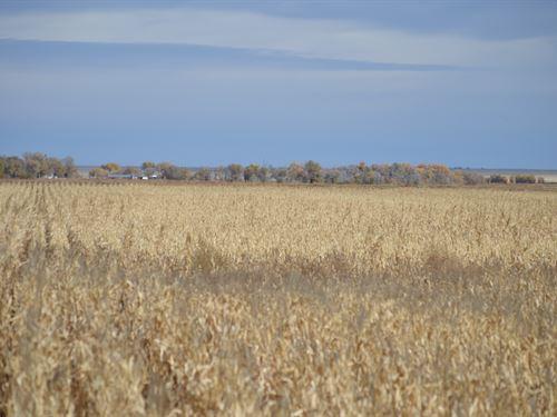 Irrigated Farm For Sale : Las Animas : Bent County : Colorado