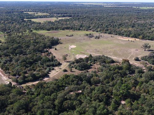 Secluded 38.11 Acres : Milano : Milam County : Texas