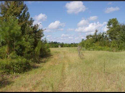 165 Acres In Attala County In Kosci : Kosciusko : Attala County : Mississippi