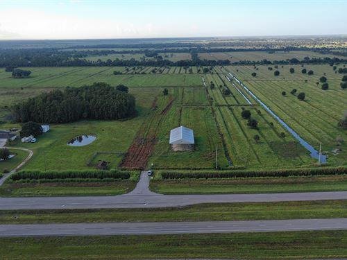 Okeechobee Road Hay Field : Fort Pierce : Saint Lucie County : Florida