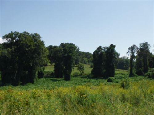 6.16 Ac Open Pasture, Level To Roll : Sparta : Clay County : Tennessee