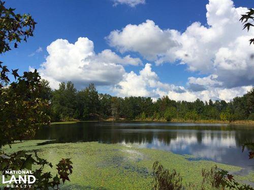 Hwy 903 Mini-Farm With Pond And Bui : Jefferson : Kershaw County : South Carolina