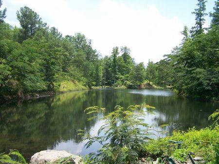 Wolf Creek Farm : Berry : Fayette County : Alabama