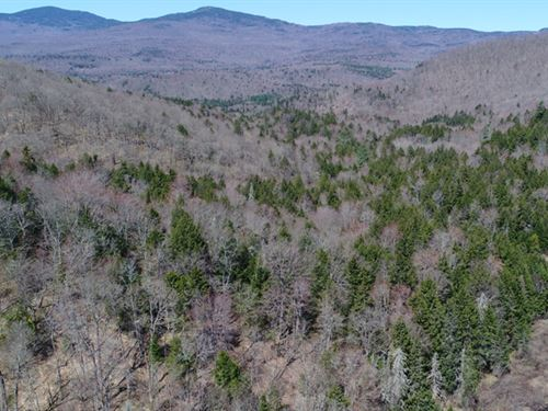Eagle Ledge Timberland Tract : Worcester : Washington County : Vermont