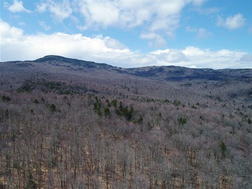 Catamount Timberland Tract : Worcester : Washington County : Vermont