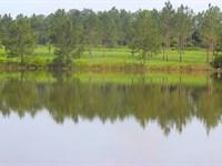 Pinefield- Perfect Gentlemen's Farm : Thomasville : Thomas County : Georgia