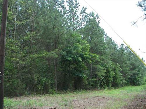 617 Acres of Prime Hunting Land : Hokes Bluff : Etowah County : Alabama