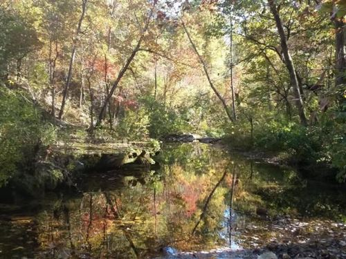 263 Mostly Wooded Acres, Noblett : Willow Springs : Howell County : Missouri