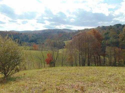Gorgeous Farm Tract Grayson County : Elk Creek : Grayson County : Virginia