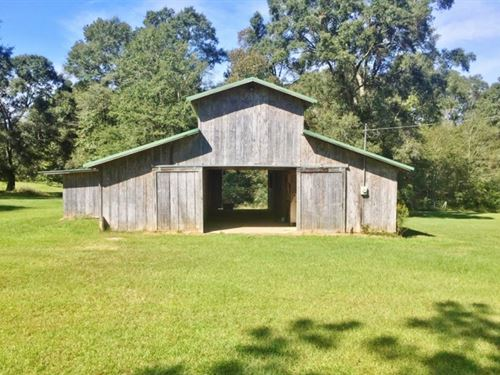 Small Acreage For Sale North Pike : Summit : Pike County : Mississippi