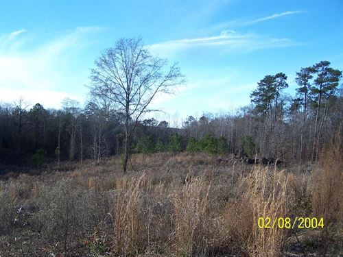 Commercial Land Hwy 51 Wesson : Wesson : Copiah County : Mississippi