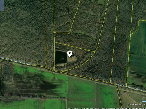 Duck/Waterfowl Hunting Property : Dyer : Gibson County : Tennessee