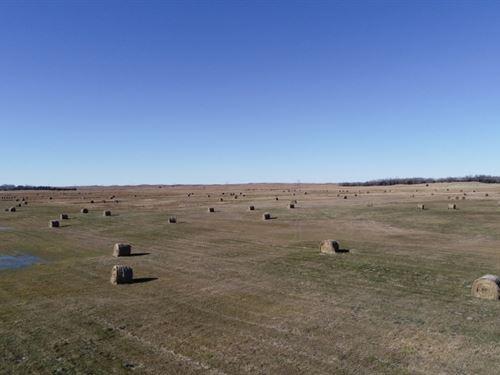 Brown County Meadow : Johnstown : Brown County : Nebraska