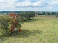 55 Acres, Madison County : Midway : Madison County : Texas