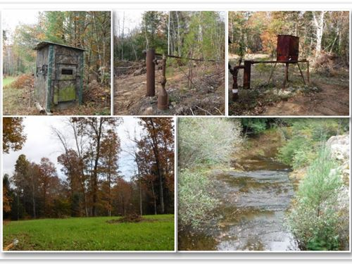 251.98 Ac, Gas Wells, Great Hunting : Allardt : Fentress County : Tennessee