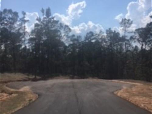 Amazing Acerage In Cul De Sac : Monroe : Walton County : Georgia