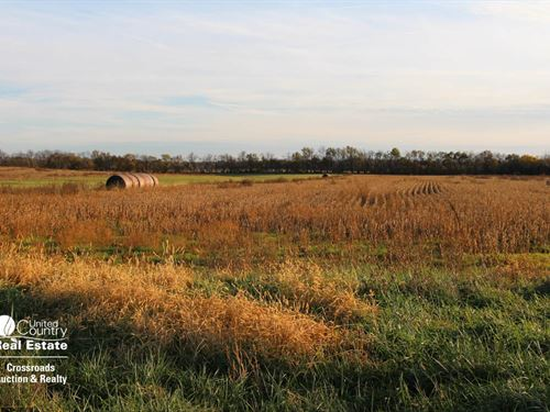 Tract 2, 117 Acres Farmland : Edgerton : Johnson County : Kansas