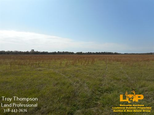 30.08 Acres Commercial : Marksville : Avoyelles Parish : Louisiana