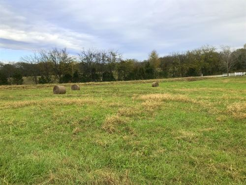 Great Land For Smaller Farm : Culleoka : Maury County : Tennessee