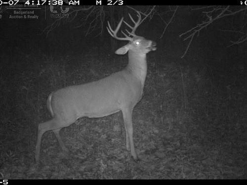 Hunting/Timberland Parcel : Aniwa : Marathon County : Wisconsin