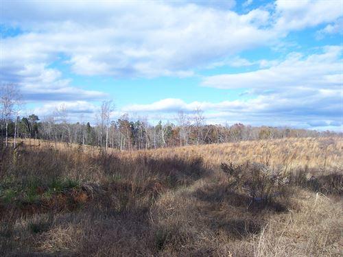 Nice Hunting Tract : Arvonia : Buckingham County : Virginia