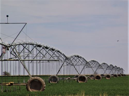 Irrigated Farms, Nm, Acreage : Hope : Eddy County : New Mexico