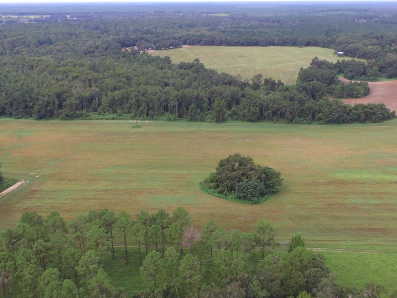 835 Acs Of Pasture & Timber W/Lk : Greenville : Madison County : Florida