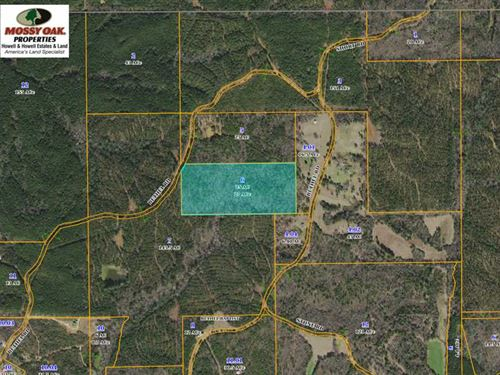 25 Acre Hunting, Investment And Re : Carthage : Leake County : Mississippi