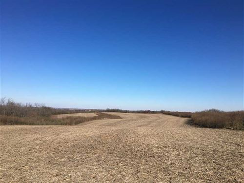 87 Acres M/L, Farm And Timber Land : Bussey : Marion County : Iowa