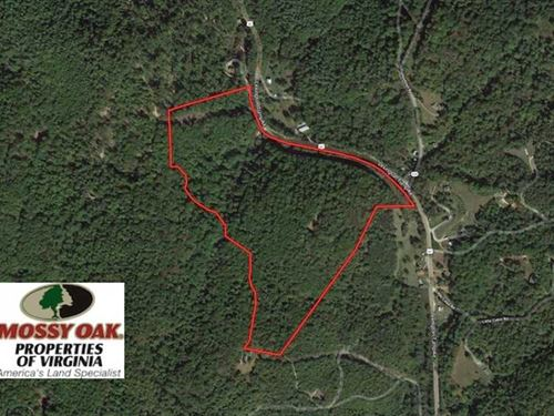 61 Acres of Recreational And Resid : Amherst : Virginia