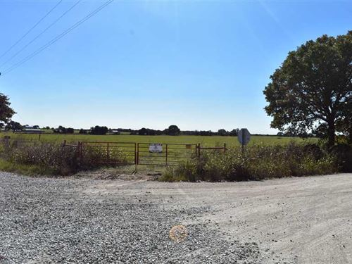 Nice 29 Acre Farm Plot OR Homesite : Sunset : Montague County : Texas