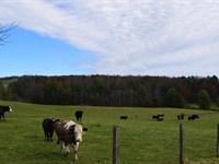 Floyd VA Farm Land Water & Building : Copper Hill : Floyd County : Virginia