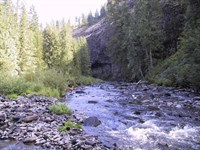Investment Timberland River : Deary : Latah County : Idaho