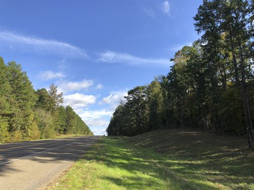 61 Acres Hwy 204 : Jacksonville : Cherokee County : Texas