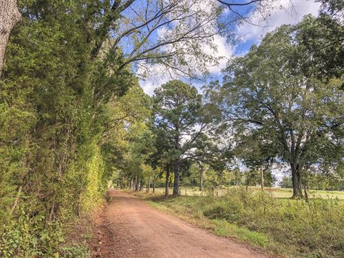 30 Acres Cr 1412 : Jacksonville : Cherokee County : Texas