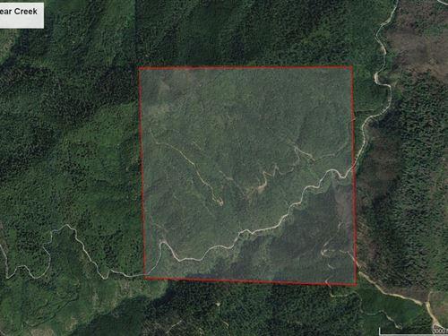 Goat Trail Bear Creek : Glendale : Douglas County : Oregon