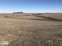 The Back 40 Farm Land : Earling : Shelby County : Iowa