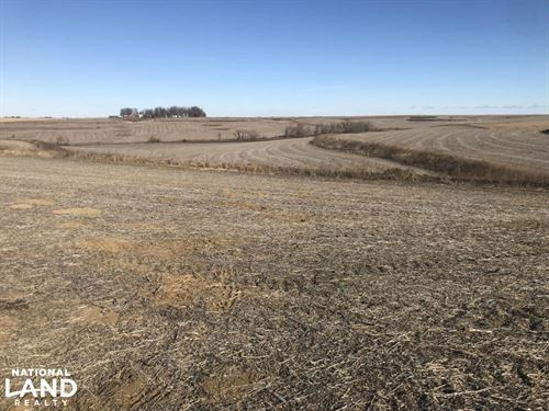 The Back 40 Farm Land : Earling : Shelby County : Iowa