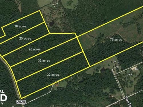 Large Wooded Ranchettes, 32 : Huntsville : Walker County : Texas