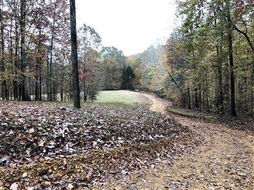 Income Producing Timber/Recreation : Westpoint : Lawrence County : Tennessee