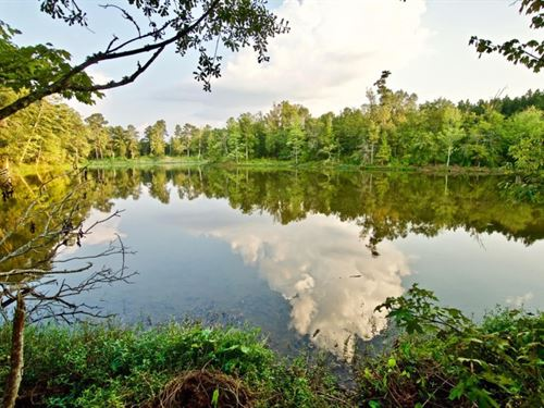 656 Acre Recreational Oasis, Natche : Natchez : Natchitoches Parish : Louisiana