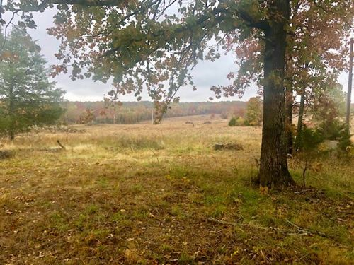 Looking Great Hunting Property : Gatewood : Ripley County : Missouri