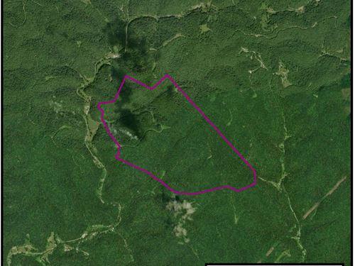 599 Acre Parcel : Pocatalico : Putnam County : West Virginia