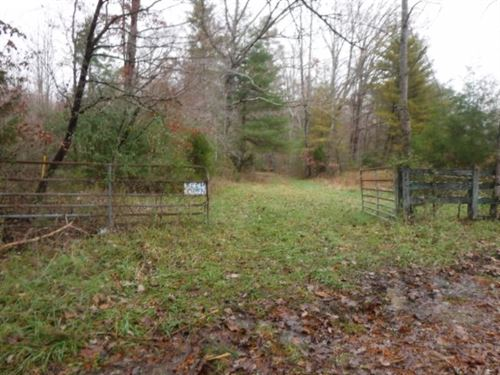 85.60 Ac, Creek, Springs : Deer Lodge : Morgan County : Tennessee