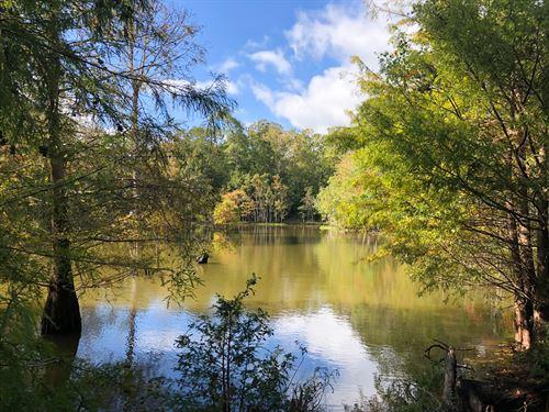 115 Ac Off Pr 8090 : Deweyville : Newton County : Texas